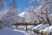 忍野村より富士山