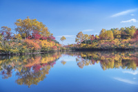 紅葉の大雪山高原沼めぐり エゾ沼