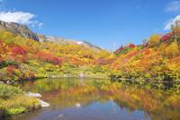 紅葉の大雪山高原沼めぐり 式部沼