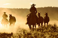 cowboys horseriding at sunset