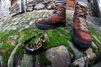 Shoes and Salamander on paving stones