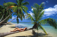 Woman lying on palm tree