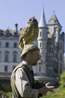 Eagle Owl sitting on the head of a man