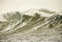 USA, Hawaii, lifeguards aid surfers in large surf, Waimea Bay, Oahu, North Shore
