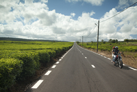 MAURITIUS, a couple on their motorcycle drive through the tea fields of Bois Cherie