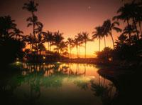 プールの夕景  マウイ ハワイ