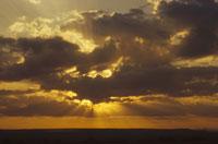 マサイマラ国立保護区の日没 ケニヤ アフリカ