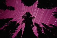 セントラルバレーの夜空の星の軌跡