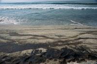 海岸の流出重油