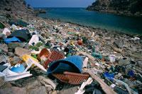 海岸のゴミ