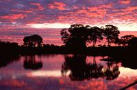 パラグアイ川と日没のパンタナール
