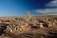 砂漠に捨てられたゴミ