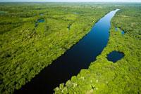 Rio Negro,Pantanal,Brazil