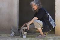 家畜をチーターから守るイヌとローリー・マーカー博士
