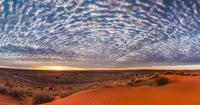 夜明けのシンプソン砂漠