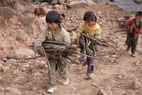 薪を運ぶ子どもたち