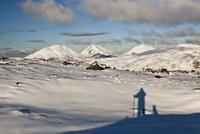 雪山に映る人とイヌの影