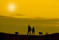 イヌの散歩をする人 シルエット