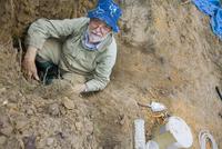 オオキバハリアリの巣を掘り起こすテイラー博士