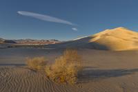 ユーリカ砂丘