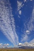 飛行機雲と積雲