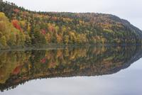 秋の湖岸 01543048308| 写真素材・ストックフォト・画像・イラスト素材|アマナイメージズ
