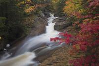秋の渓流 01543048315| 写真素材・ストックフォト・画像・イラスト素材|アマナイメージズ