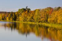 秋の樹木と川 01543048319| 写真素材・ストックフォト・画像・イラスト素材|アマナイメージズ