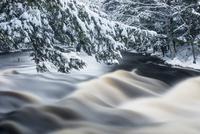 冬のマージー川