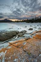 オレンジ色の苔に覆われた海岸の岩