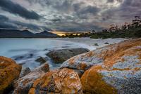 オレンジ色の苔に覆われた海岸の岩 01543048752| 写真素材・ストックフォト・画像・イラスト素材|アマナイメージズ