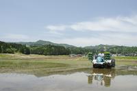田植え機による田植えと水田風景