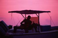 ギターを弾く男 01569000328| 写真素材・ストックフォト・画像・イラスト素材|アマナイメージズ