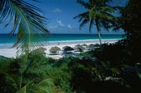エルーセラ島のピンクサンドビーチ バハマ