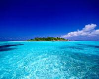 トロピカルアイランド 01570090287| 写真素材・ストックフォト・画像・イラスト素材|アマナイメージズ