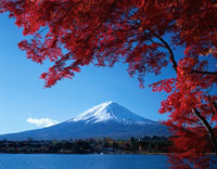 秋の富士山と河口湖の紅葉(赤) 河口湖町 山梨県 01577008606| 写真素材・ストックフォト・画像・イラスト素材|アマナイメージズ