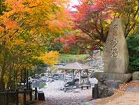 秋の湯原温泉の露天風呂 01597013816| 写真素材・ストックフォト・画像・イラスト素材|アマナイメージズ