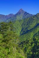 新緑の石鎚山