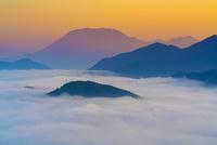 朝の雲海と大山
