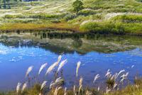 秋の砥峰高原 01597028824| 写真素材・ストックフォト・画像・イラスト素材|アマナイメージズ