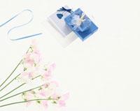 スイトピーの花とテープとプレゼント