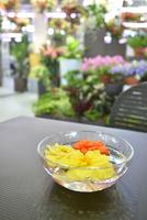 いくとぴあ食花の室内ガーデン