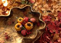 秋の実と落ち葉(柿、むべ、他)