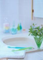 ミントと歯ブラシのある洗面台 01636090524| 写真素材・ストックフォト・画像・イラスト素材|アマナイメージズ