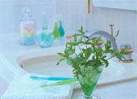 ミントと歯ブラシのある洗面台 01636090525| 写真素材・ストックフォト・画像・イラスト素材|アマナイメージズ