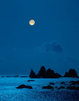 満月と蓑掛岩 2月   南伊豆 静岡県