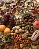 秋の味覚 01651005400| 写真素材・ストックフォト・画像・イラスト素材|アマナイメージズ