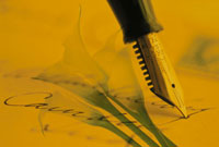 万年筆と花(カラー) フォトコラージュ