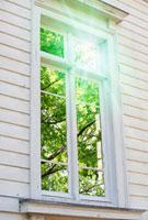 窓と緑と光