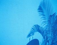 水面のカクテルグラスと椰子の葉の影